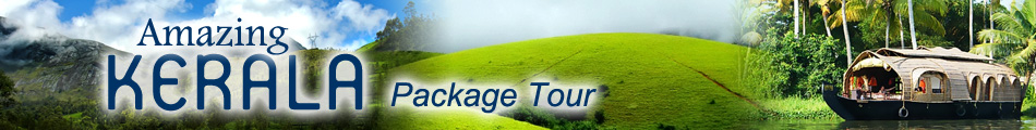 kerala package tour operator